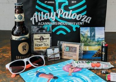 Allaypalooza Branding 2